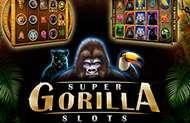 Игровой автомат Горилла в казино Вулкан Вегас