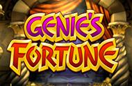Игровые автоматы Вулкан Вегас Genie's Fortune