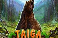 Играть Taiga онлайн