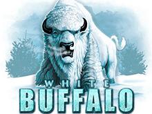 Реальные шансы на удачу на игровом автомате White Buffalo
