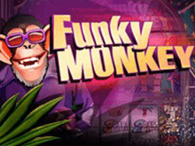 Funky Monkey – игровой автомат без бонус-функций от Playtech