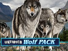 Untamed Wolf Pack от Microgaming – играйте с азартом